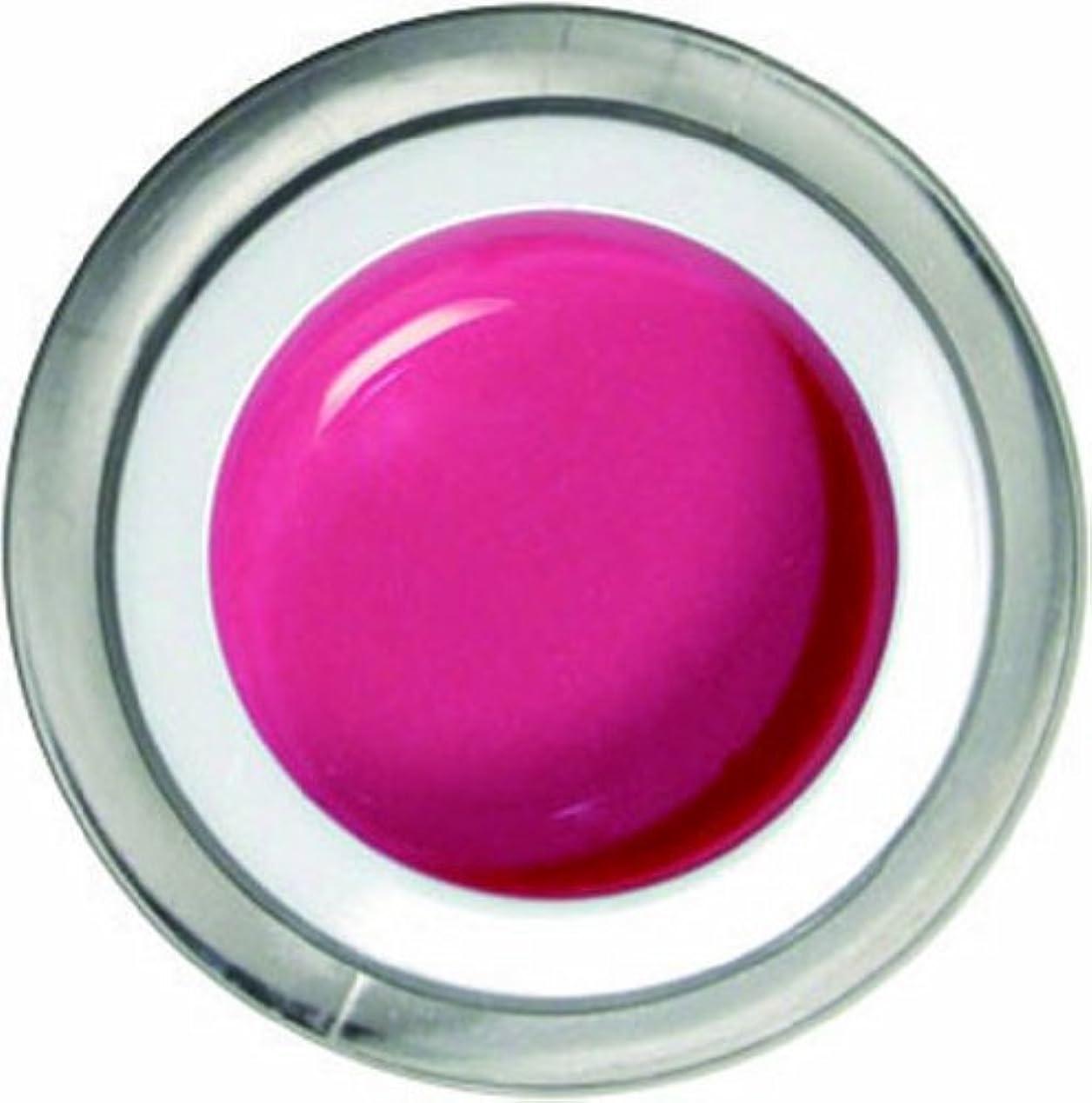 ソブリケットボーナス粘土メロディコ メロディコジェル #08プリンセスピンク