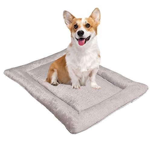 PHD Primera Hundekissen Komfort M grau 60x40 cm, allergikerfreunlich (100% Polyester) - 40°C waschbar mit flauschigem Stoffbezug - Hundematte BZW. Hundebett für kleine Hunde, 60 x 40 cm