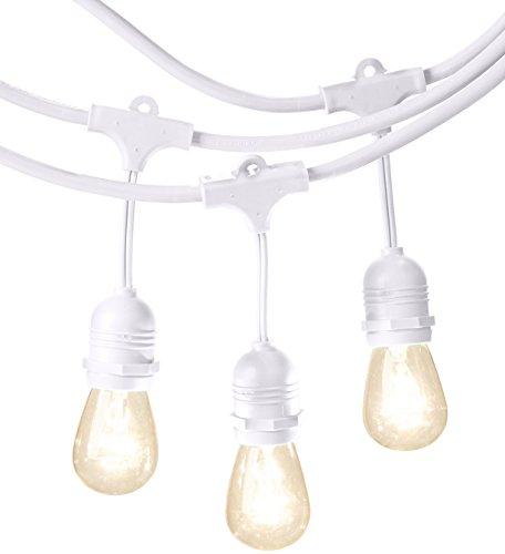 AmazonBasics PL200-48-WHT Patio String Light, 48 Feet, White