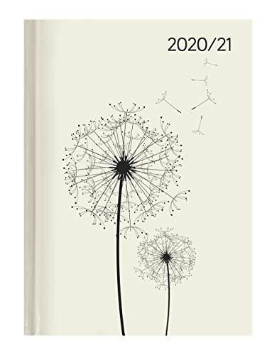 Campustimer Blowballs - A5 Semester-Planer - Studenten-Kalender 2020/2021 - Notiz-Buch - Pusteblume - Weekly - Alpha Edition
