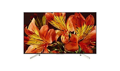 Sony KD-65XF8599 165 cm (Fernseher,1000 Hz)