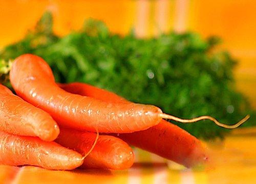 10 paquets d'origine, 120 graines/Pack, Rouge laitue rouge Saladier semences végétales Raro
