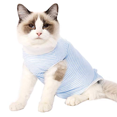Dotoner Cat Professional Recovery Suit, Surgical Recovery Shirt for Abdominal Wounds Bandages Cone E-Collar Alternative for Cats After Surgery Medical Suit Soft Pets Clothing Indoor (Blue, L)