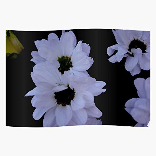 nastygal Bold Flowers Edgy Eboy Egirl Cold Gothic Emo Das eindrucksvollste und stilvollste Poster für Innendekoration, das derzeit erhältlich ist