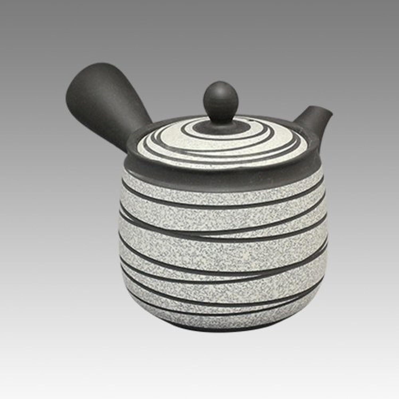 TOKYO MATCHA SELECTION - Tokoname Kyusu teapot - ZUISEN - Strange Line Stage 400cc ml - obi ami acier inoxydable net [Standard ship by SAL  NO Tracking number & Insurance]