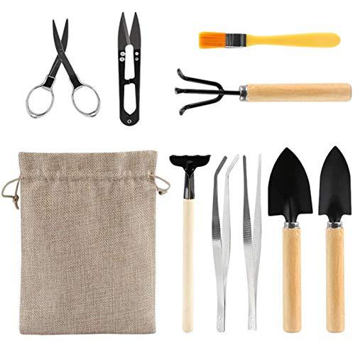 OOTD Mini Kit de Herramientas de jardín, 10 Herramientas, Incluye Tenedor, Pala, rastrillo, Cepillo de Limpieza, Mini Juego de Herramientas para bonsái para macetas pequeñas, Mini Plantas