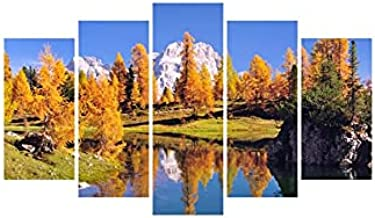 Decorative wall panel (5 pieces)