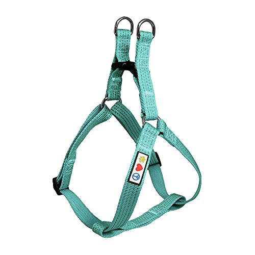 Pawtitas Reflective Step in Dog Harness or Reflective Vest Harness, Comfort Control, Training Walking of Your Puppy / Dog Medium Dog Harness M Teal Dog Harness