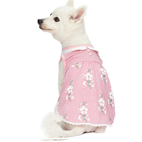 Blueberry Pet Pink Stripe Dress