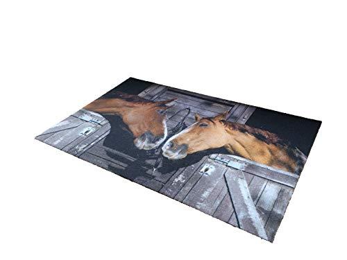 oKu-Tex Fußmatte | Schmutzfangmatte | 'Deco-Star' | Aufdruck/Motiv | Pferde | Pferdestall | Tiere | Dekorativ | Innenbereich | rutschfest | 50x80 cm