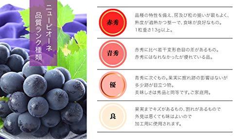 ぶどうニューピオーネ摘み落とし秀品200gx6パック岡山県産JAおかやま葡萄ブドウ