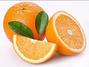 Vistaric Delicioso Golden Orange Seed Mini Potted Semillas de árboles frutales Interesante planta de bonsáis 50 partículas/lote 10