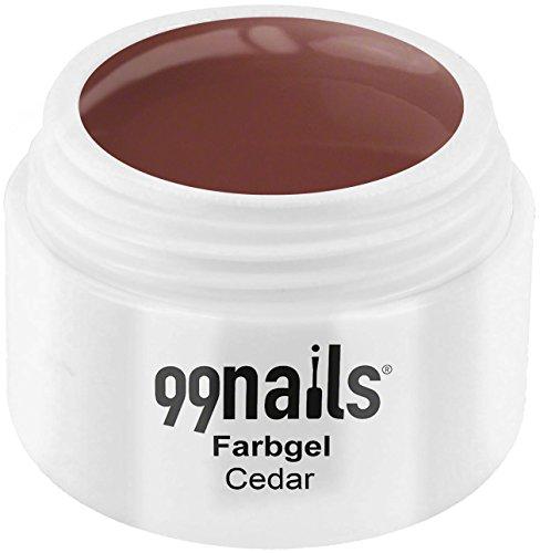 99 Nails® Farbgel – Cedar, 1er Pack (1 x 5 ml)
