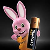 Zoom IMG-2 duracell plus aa batterie silo