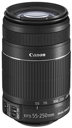 Canon EFS 55-250mm f/4.0-5.6 is II Telephoto Zoom Lens for Canon Digital SLR Cameras - International Version (No Warranty)