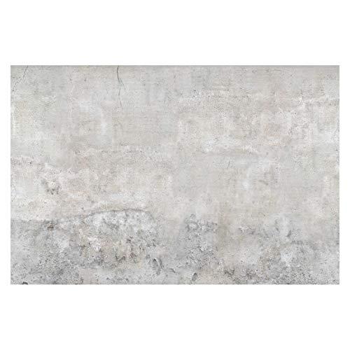 Vliestapete Shabby Betonoptik, HxB: 255cm x 384cm