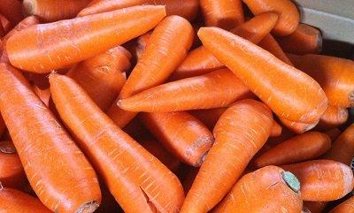わけあり フルーツ人参 5kg 土づくり農薬化学肥料不使用 ベジップル