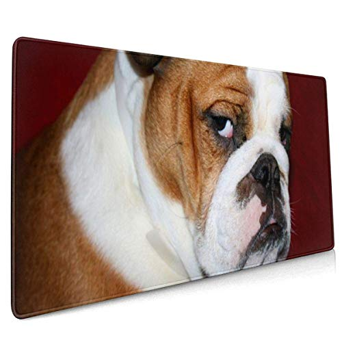 Mousepad,Furry English Bulldog Mouse Pad, Stilvolles Perfektes Laptop-Gaming-Pad Für Home Office-Dekoration,40x90cm