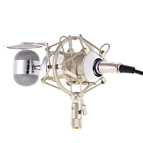 Recording Mic Uni-Directional Co...