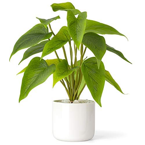Mkono Artificial Plant in Ceramic Pot, 11' Tall Desktop Faux Potted Plants Decorative Plastic Fake Green Leaf Plant with Modern White Planter for Indoor Home Office Decor (Pothos)