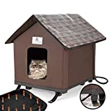 10 Best Heated Kitty Houses