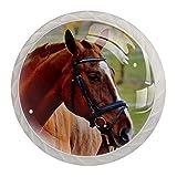 Pomos de Blanco Cristal Autumn Horse Farm Marrón RedondoTir