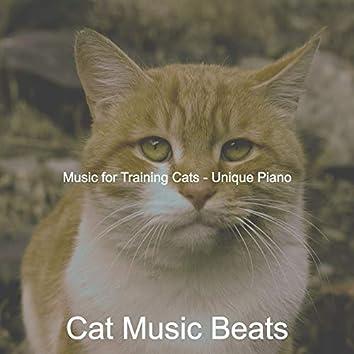 Music for Training Cats - Unique Piano