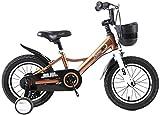 Kinder im Freien Fahrrad-Indoor-Kinderfahrradminifahrrad-Jungen-Mädchen-Scooter Kids Travel Werkzeugschlitten Recht Fahrrad for Kinder (Farbe: B, Größe: 16inches) lalay ( Color : D , Size : 16inches )