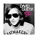 David Guetta's Album Cover – One Love Leinwand Poster