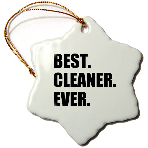 3dRose Best Cleaner Ever fun gifts for tidy neat freaks housepride...