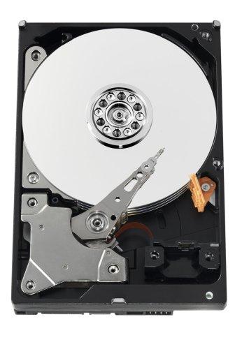 Western Digital 500 GB AV-GP SATA 3 Gb/s Intellipower 8 MB Cache Bulk/OEM AV Hard Drive- WD5000AVVS