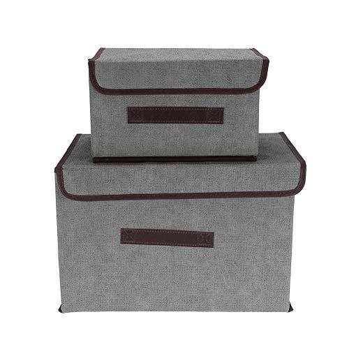 Changor Caja de Almacenamiento de Ropa a Prueba de Polvo, Cajas de Almacenamiento de PCS Hechas de Material de Tela de Tela para Ropa de Libros de Ropa