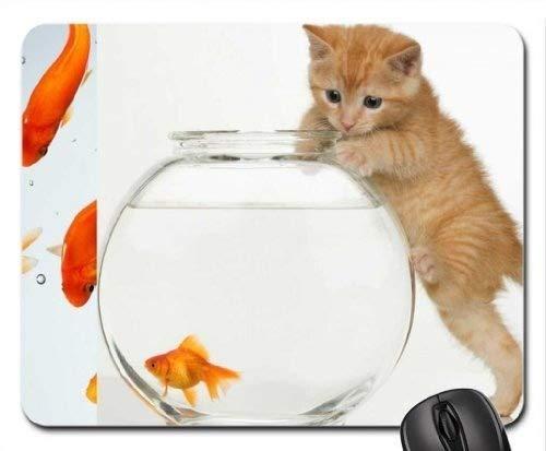 Fisch-themenorientiertes Spiel-Mauspad, Kätzchen im Aquarium. Hmm.Fisch im Aquarium. Mauspad, Mousepad (Katzen-Mauspad)