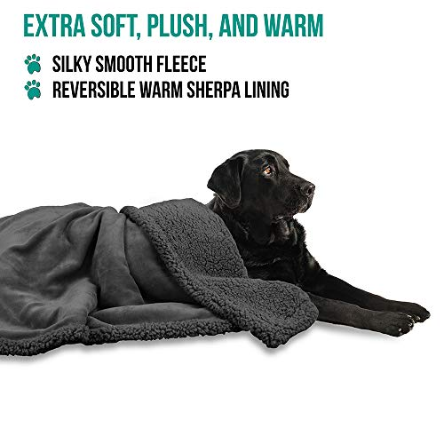 chew proof dog blanket for bed