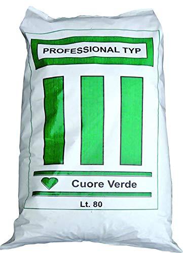 TERRICCIO Acido Sacco LT.80 TERRICCIO per Azalee RODODENDRI E Piante ACIDE Professionale