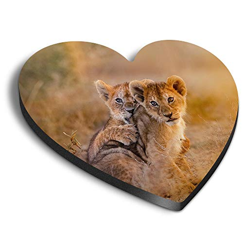 Destination Vinyl ltd Imanes de corazón MDF – Wild African Lion Cubs África Big Cat para oficina, armario y pizarra blanca, pegatinas magnéticas 14888