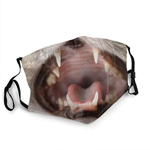 Funny Tooth Mouth Mask Protective Balaclava Unisex Windproof and Dustproof Mouth Mask with Adjustable Elastic Strap Face Cover