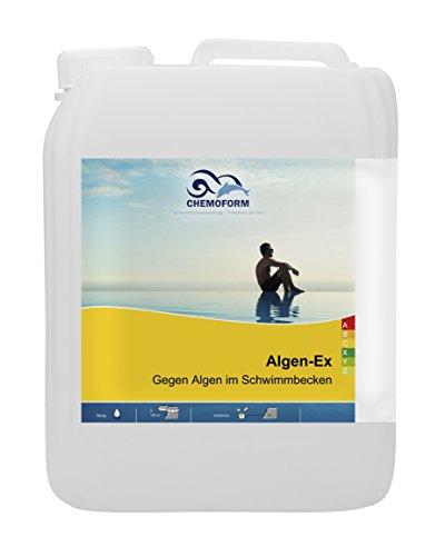 5 Liter Algen EX - Verhinderung der Algenbildung im Pool