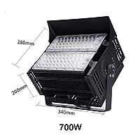 スポットライト エクステリアの作業灯、LEDワークショップライト投光器AC85-265V防水IP66ホワイト(6500K)をクール/ホワイト(3000K)を温めスーパーブライトライツ・ウォール (Color : Warm White(3000K), Size : 700W)