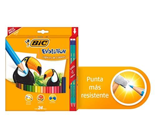colores norma de 12 doble punta fabricante BIC