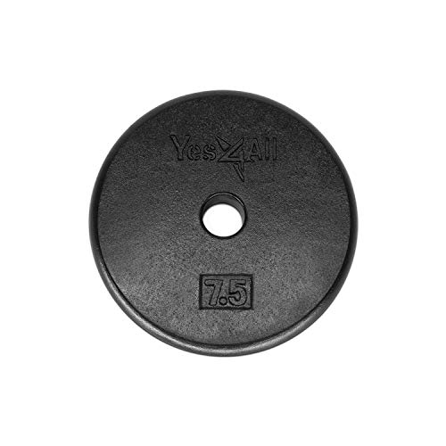Yes4All 1-inch Cast Iron Weight Plates for Dumbbells – Standard Weight Disc Plates (20 lbs, Single)