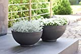 Wunderschöne Pflanzschale/Schale zum Bepflanzen – Runde Blumenschale -...