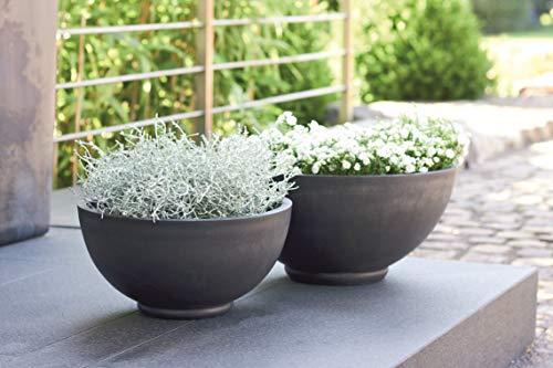 Wunderschöne Pflanzschale/Schale zum Bepflanzen – Runde Blumenschale - Kunststoff/Kunststoffschale - Winterfest (Klein: Ø 33cm, Anthrazit)