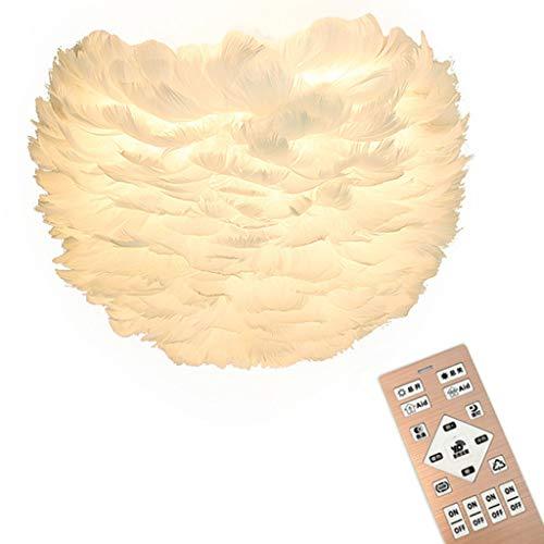 XL Appliques murales LED Plume Applique Applique Chambre à Coucher Chambre de Mariage Chevet Allée Lanterne Murale Éclairage Luminaires (Couleur : B)