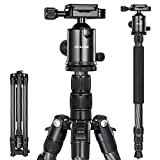 JOILCAN 81' Carbon Fiber Camera Tripod, Professional Tripod Monopod with 360 Degree Ball Head and Carrying Case for Travel and Work Load up to 35Ibs