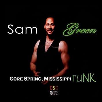 Gore Springs Mississippi Funk