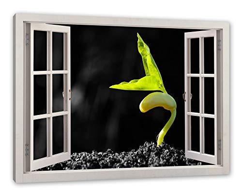 Pixxprint eenzame kiemling in aarde, ramen canvasfoto | muurschildering | kunstdruk hedendaags 120x80 cm