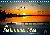 Am Steinhuder Meer (Tischkalender 2021 DIN A5 quer)