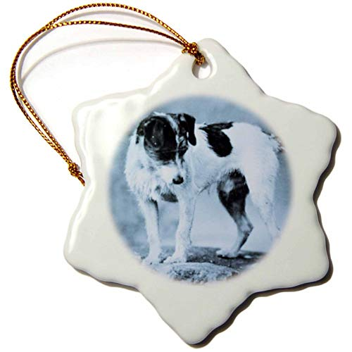 VinMea Jack Russell Terrier Cyan Snowflake Porcelain Ornament, Christmas Ornament Keepsake