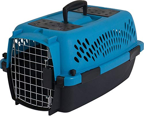 Petmate Aspen Pet Porter Heavy-Duty Pet Carrier with Secure Lock, 9 Sizes, 13 Colors